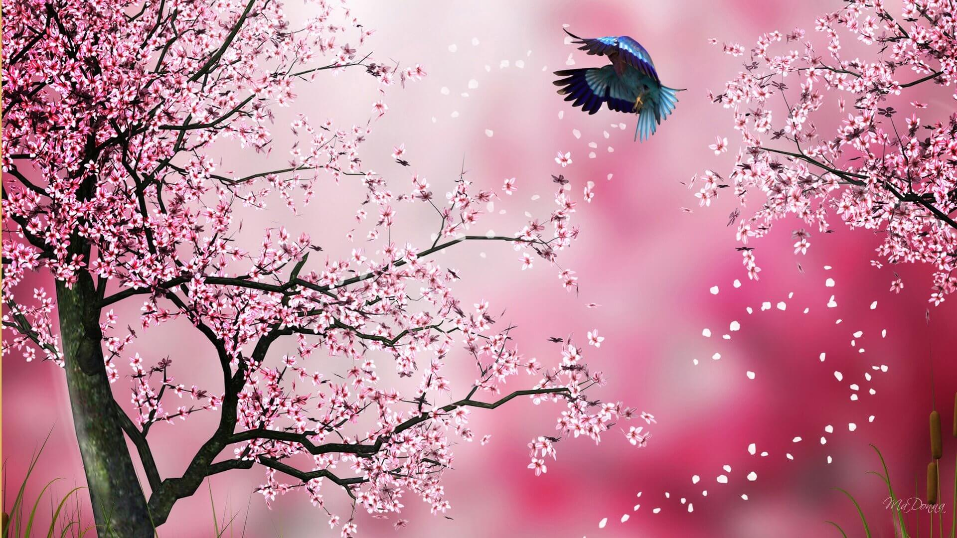 Wallpapers Firefox Persona Flowers Flower Cherry Pixel Abstract